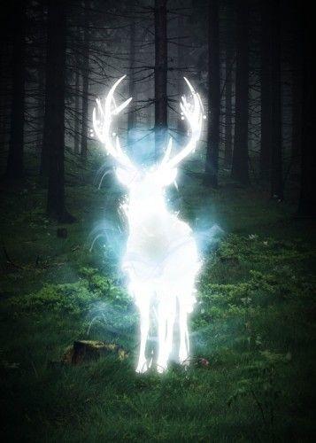 Patronus Spirit Abimal Deer Forrest Trees Harry Nature