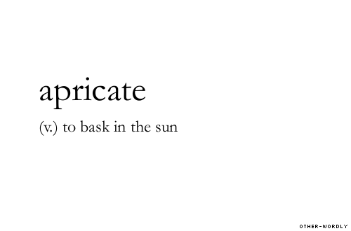 v.) to bask in the sun | Uncommon words, Unusual words, Aesthetic words