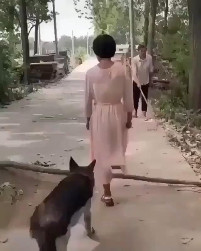 Kind Furry Friend!
