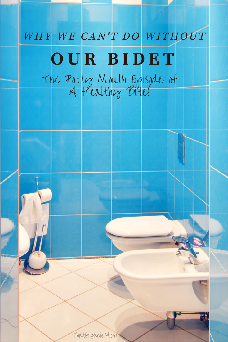 Using A Bidet The Potty Mouth Episode Of A Healthy Bite