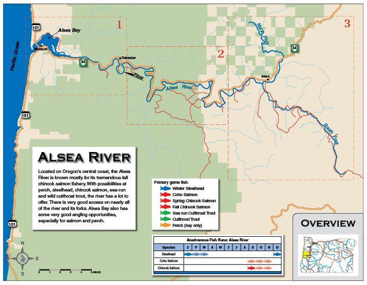 Alsea Oregon Map.Alsea River Overview Ai Fishing Maps Pinterest Fishing Maps