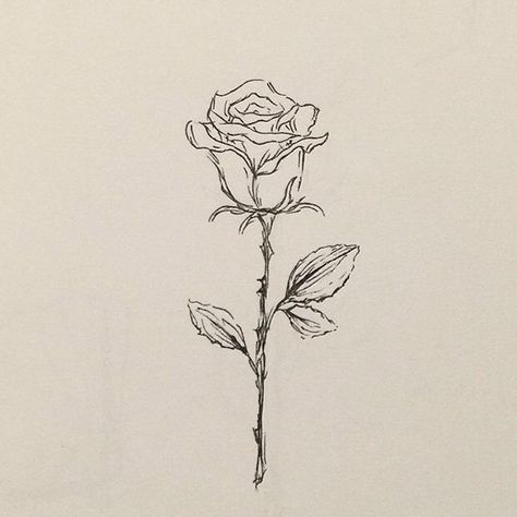 62 Trendy Tattoo Designs Rose Sketches