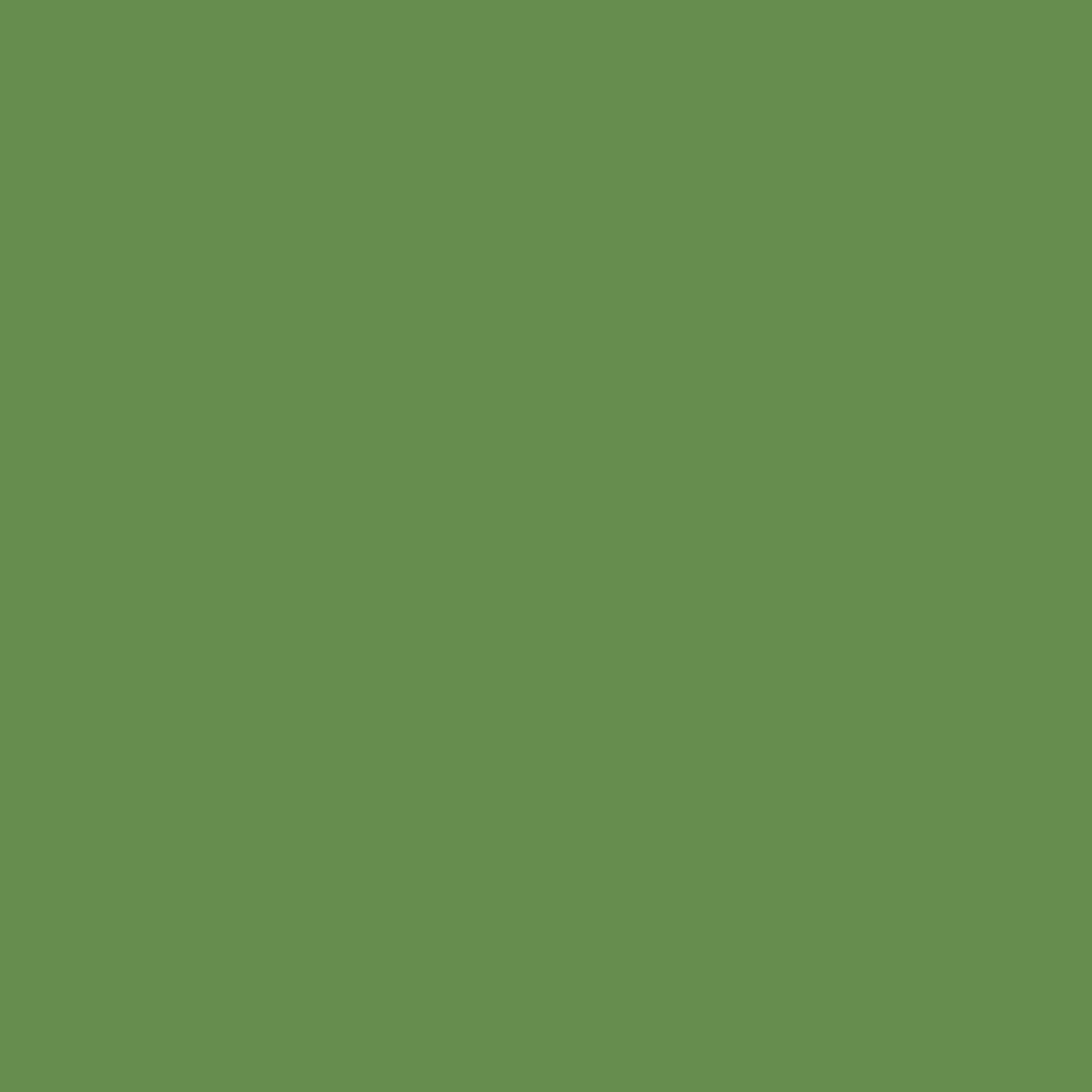 FOREST GREEN   Little greene paint company, Little greene paint ...