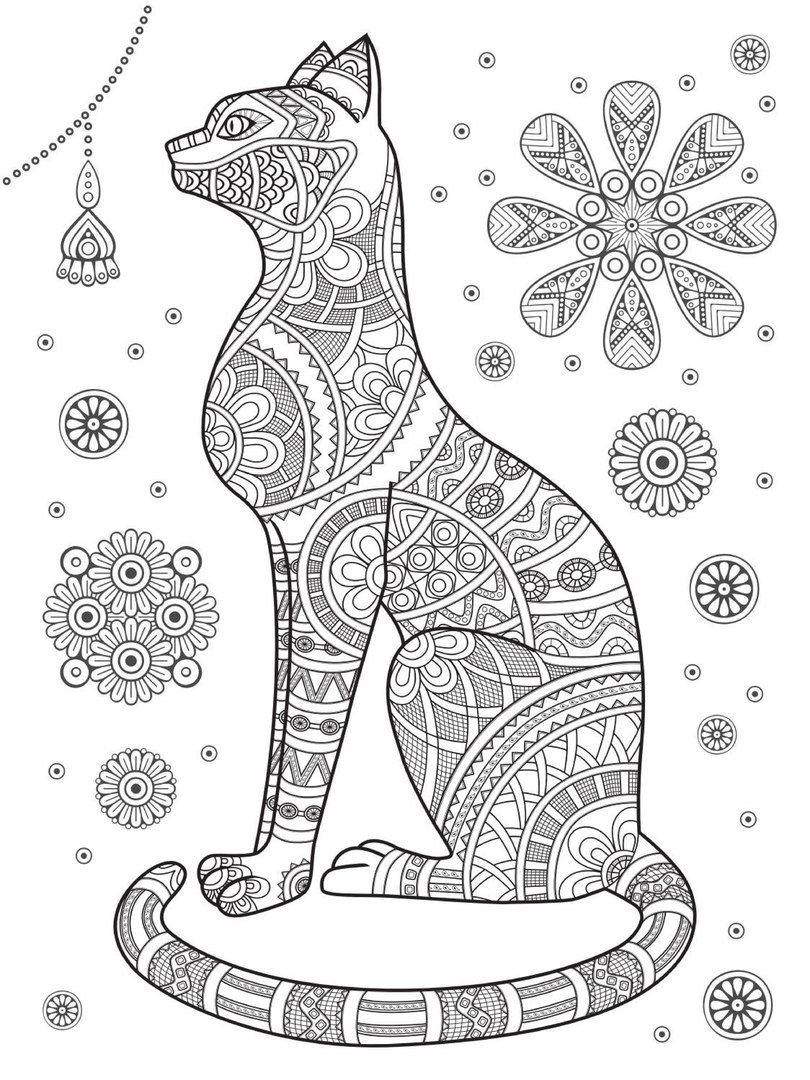 Terapia Da Sor 9 36 Photos Vk Cat Coloring Page Animal Line Drawings Animal Coloring Pages [ 1080 x 810 Pixel ]