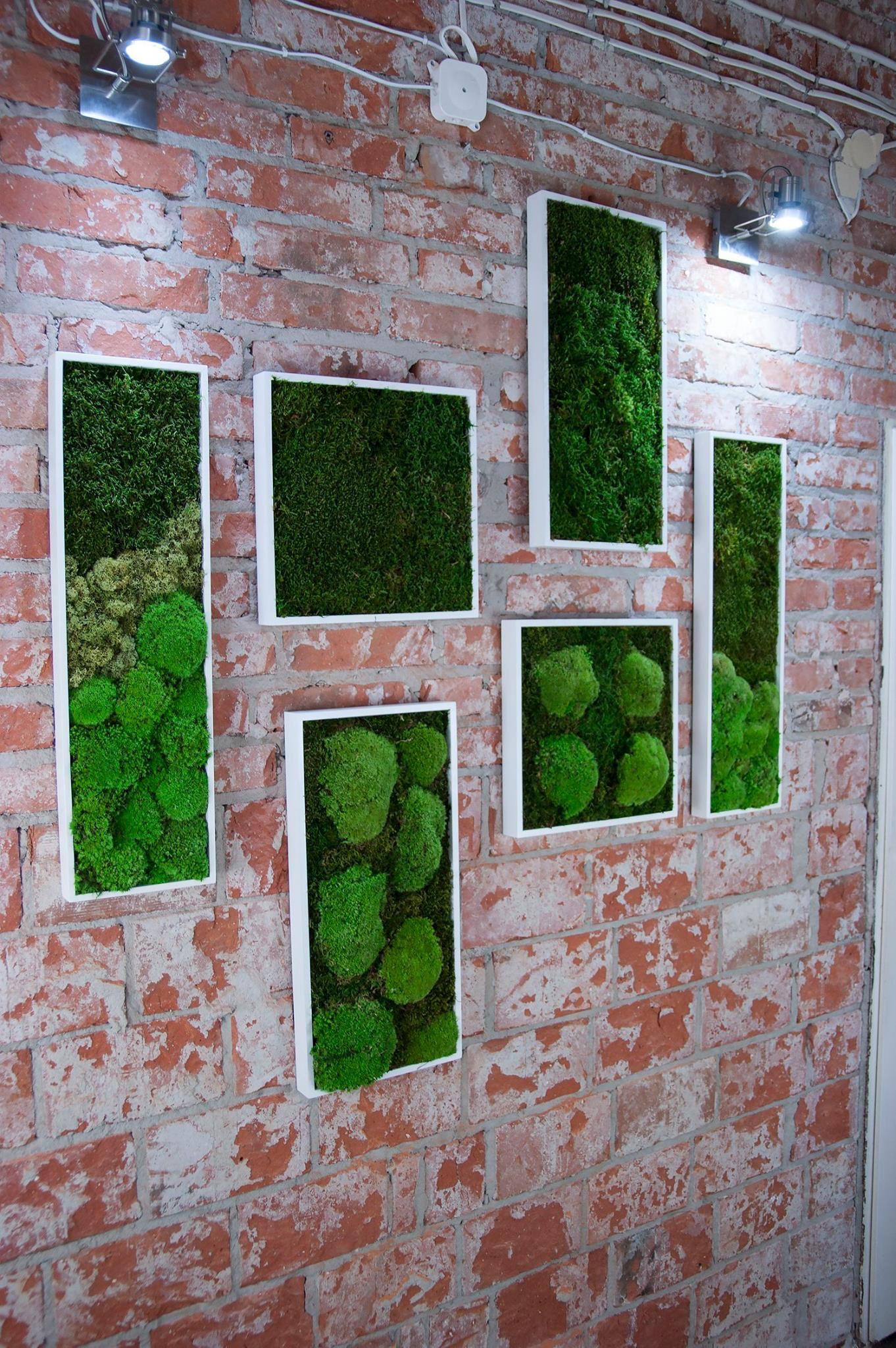 Pin by ilya maslov on design moss pinterest moss garden green
