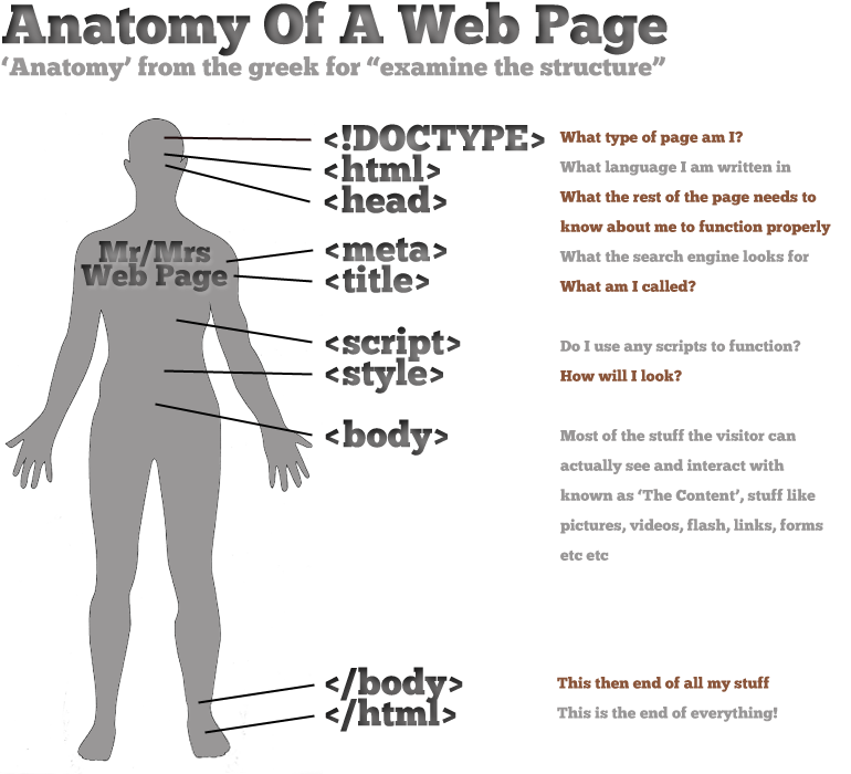 Web Page Anatomy, All The Bits & Pieces. | { rapid research ...