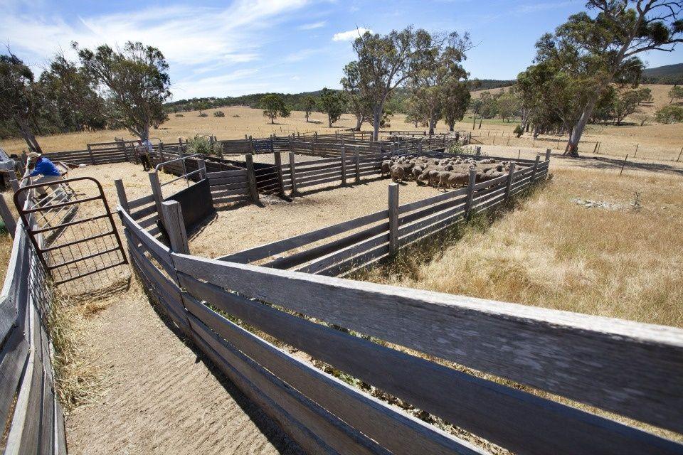 farm today Farm, Railroad tracks, Australia