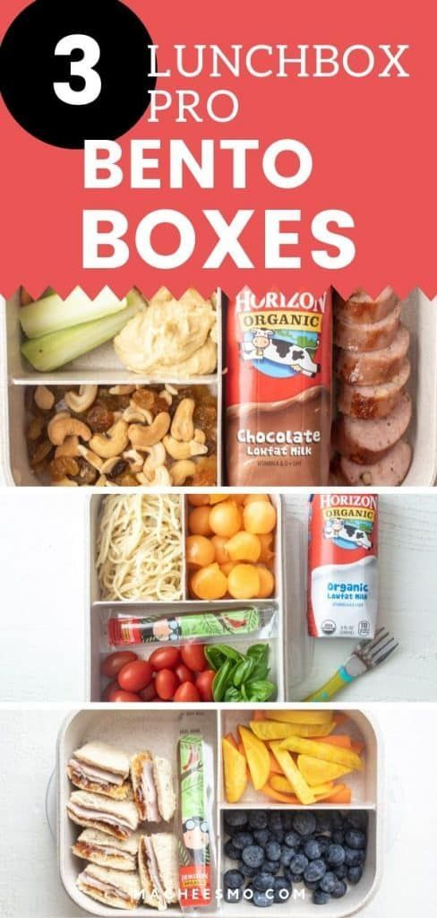 Autumn Crunch Bento Box If you have lunchbox fatigue, check out these three EASY bento-box style lu