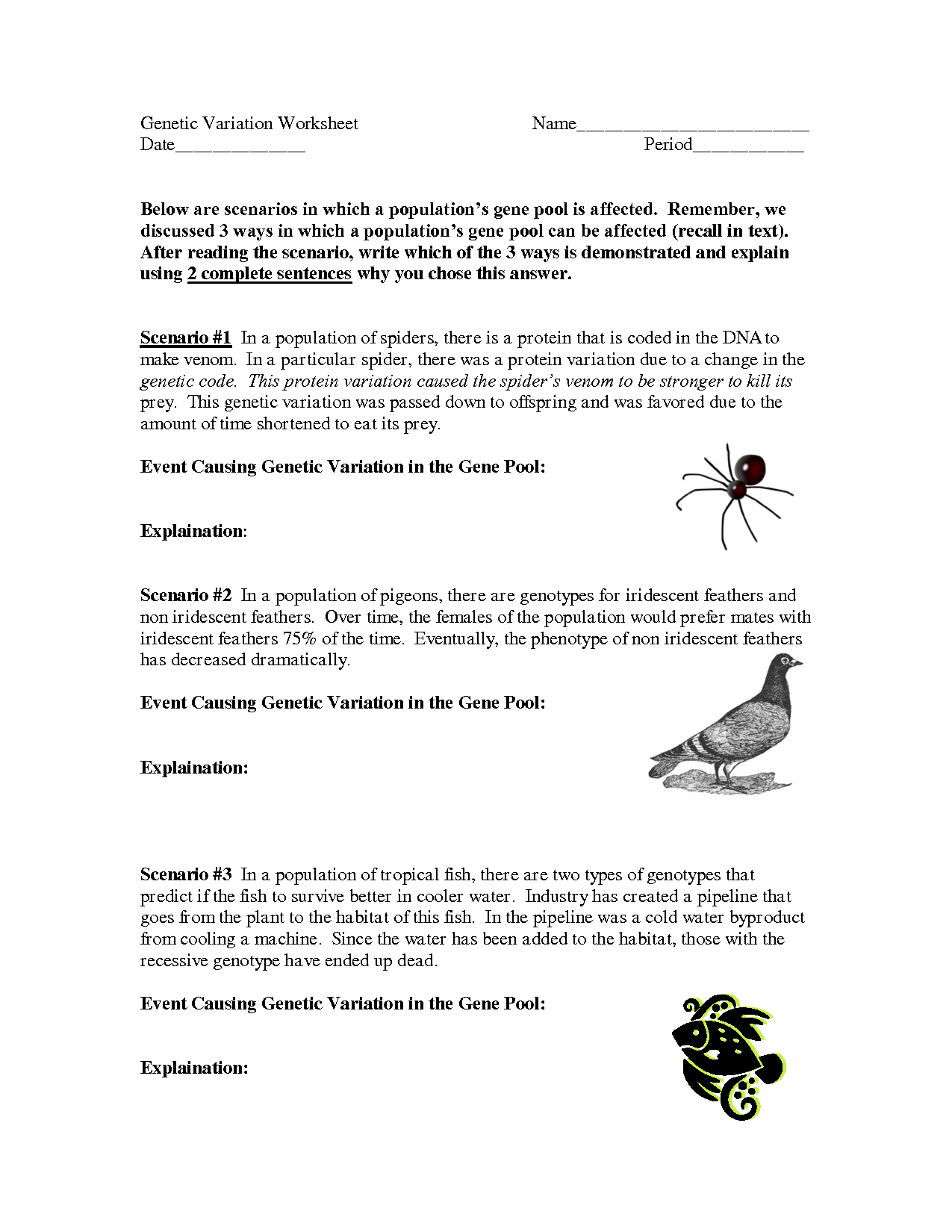 Genetic Variation Worksheet