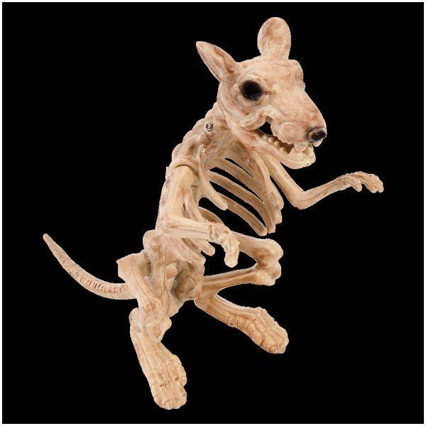 Rat Skeleton Prop £695 Rat skeleton Halloween prop Life size - life size halloween decorations