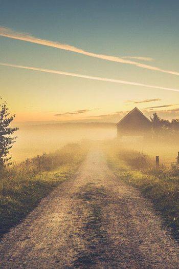 Zdjęcie: ⊱✿ ✿⊰    Dla wszystkich sercem czujących piękno listopada...<3   Skromny krajobraz listopada nieruchomieje szary świat a między drzewami duchy i wiatr szepczą modlitwę o płomień miłości  podczas misterium jesieni świece mocniej lśnią a w migotliwym blasku zapatrzenia znika czas...  wtedy rozpalam miłość o którą modlił się wiatr...  /(Mar Canela)/