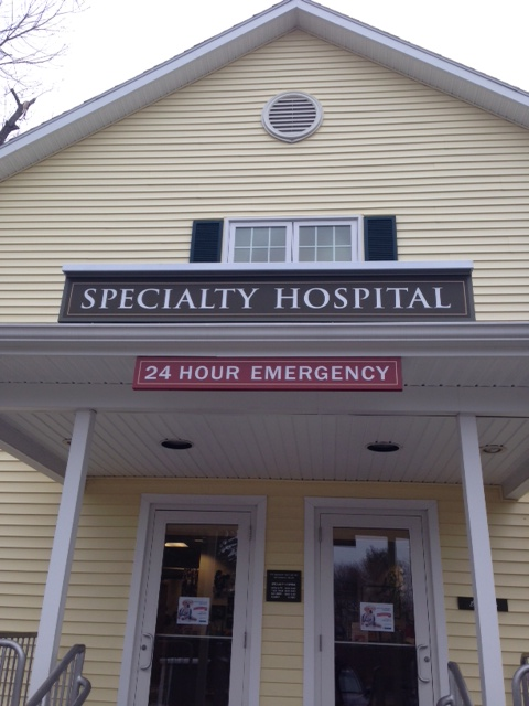 Veterinary Specialists Of Ct 24 Hour Emergency Hospital In West Hartford Ct Emergency Hospital Veterinary Pet Emergency