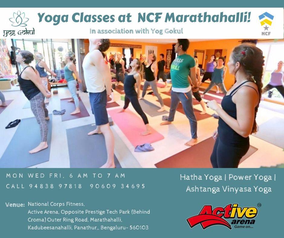 Active Arena Home Page Ashtanga Vinyasa Yoga Power Yoga Yoga Class