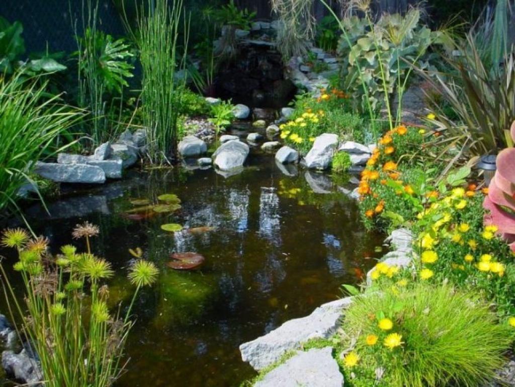 Bassin D Eau Exterieur 12 idées inspirantes pour aménager un bassin d'eau dans