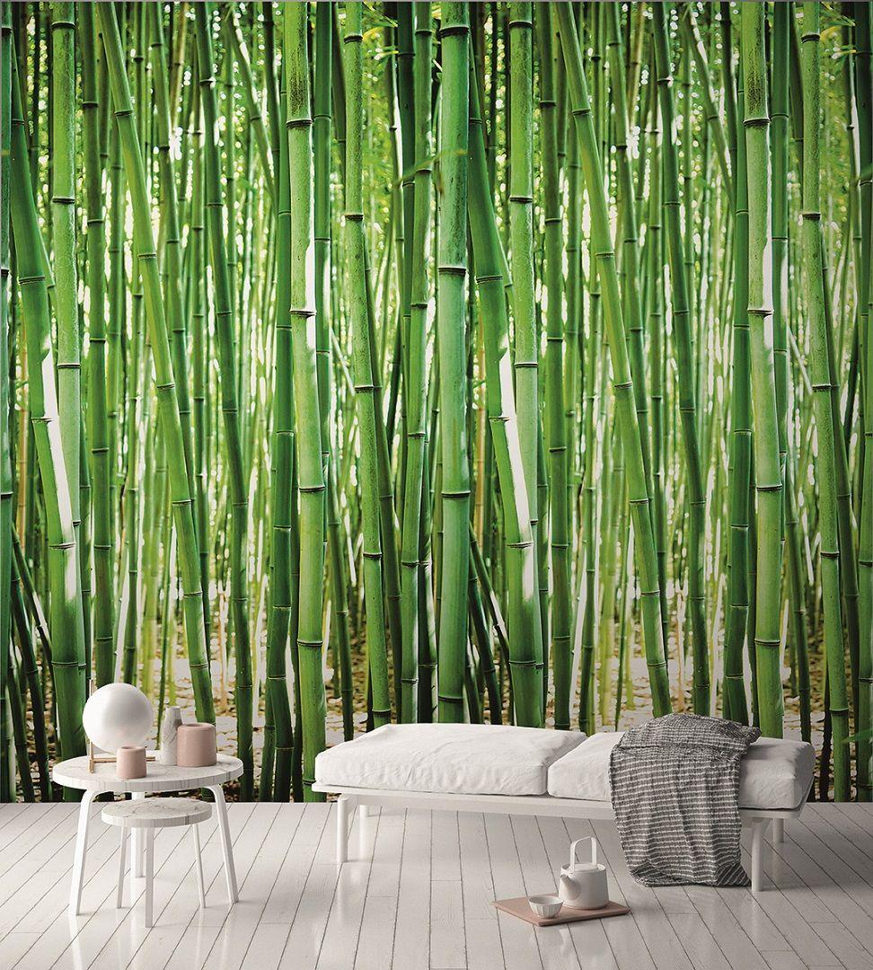 Farby, tapety i akcesoria Bambus Tapete Vlies Tapete XXL Bambuswald Foto Tapete Bambus Tapete Wandtapete Majsterkowanie