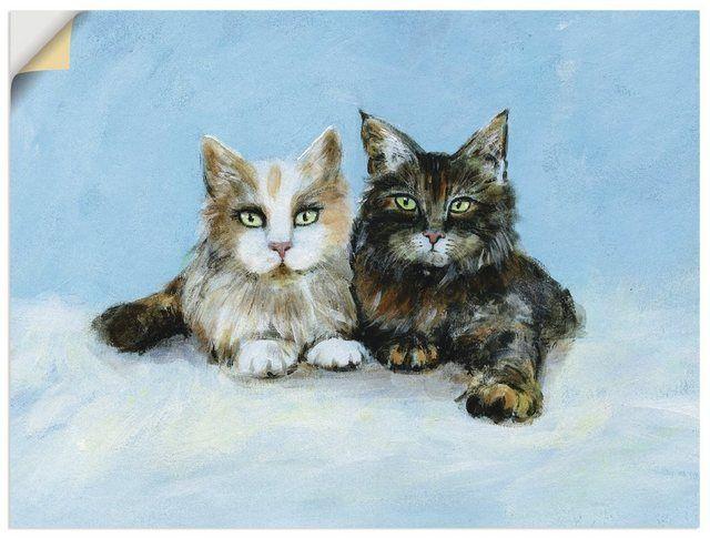 Photo of Película de pared »Ann-Kathrin Busse: gatos jóvenes Maine Coon«