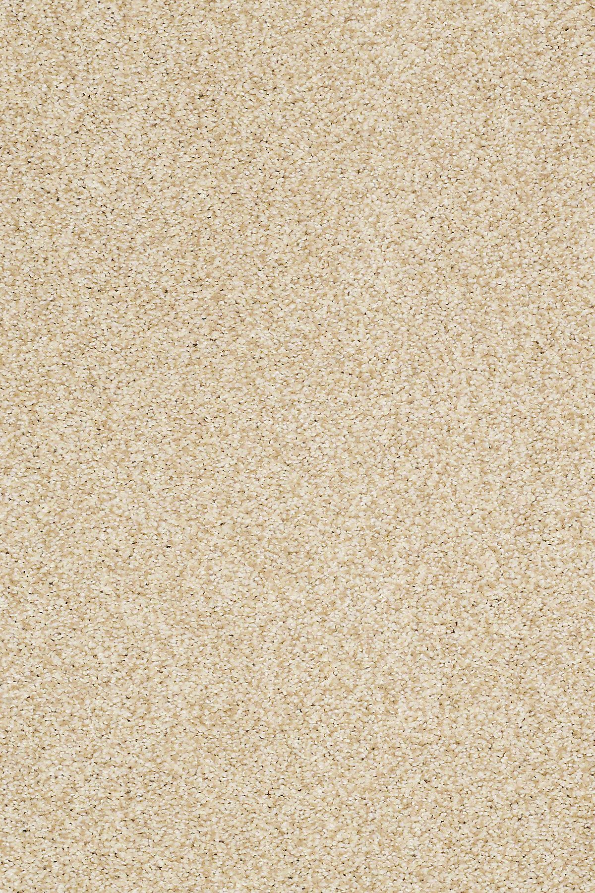 Milford Sound Ccs33 Churro Carpet Carpeting Berber Texture More In 2020 Carpet Samples Carpet Flooring Buying Carpet