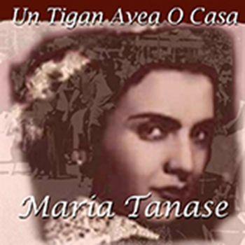 """Couverture de l'album """"Un Tigan Avea o casa"""" http://www.ndhmusic.com/Telecharger-l-album-Un-tigan-avea.html"""