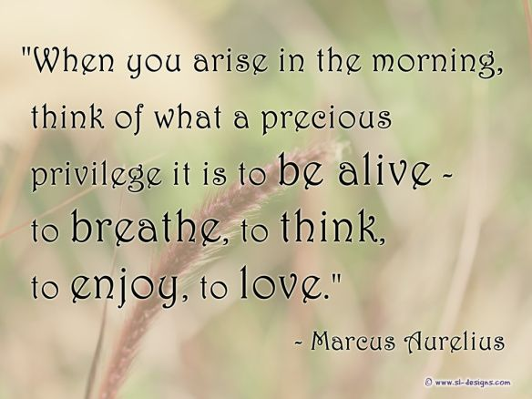 Life Is Precious Quotes Gorgeous This Precious Lifemarcus Aurelius Quote  Blessings  Pinterest . Decorating Inspiration