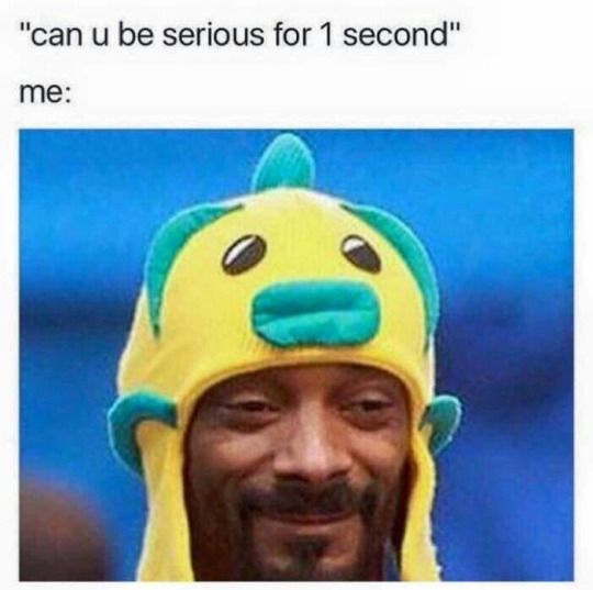 Snoop Doggity Dog Funny Pictures Funny Memes