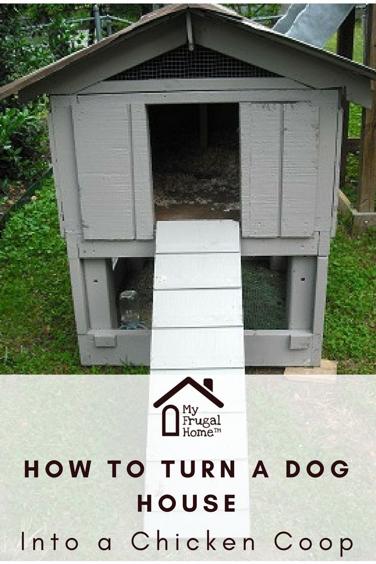 How To Turn A Dog House Into A Chicken Coop