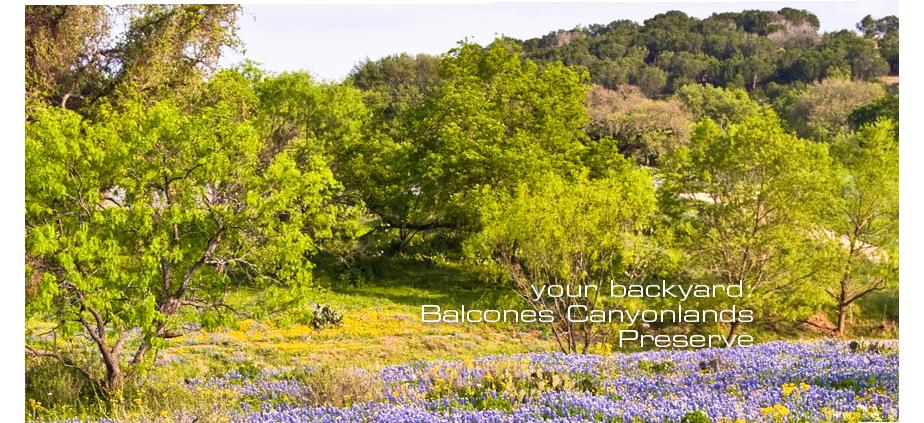 512 402 9200 1 3 Bedroom 1 2 Bath Cielo Apartments 3501 Ranch Road 620 S Austin Tx 78738 Lakeway Austin Apartment Great Places