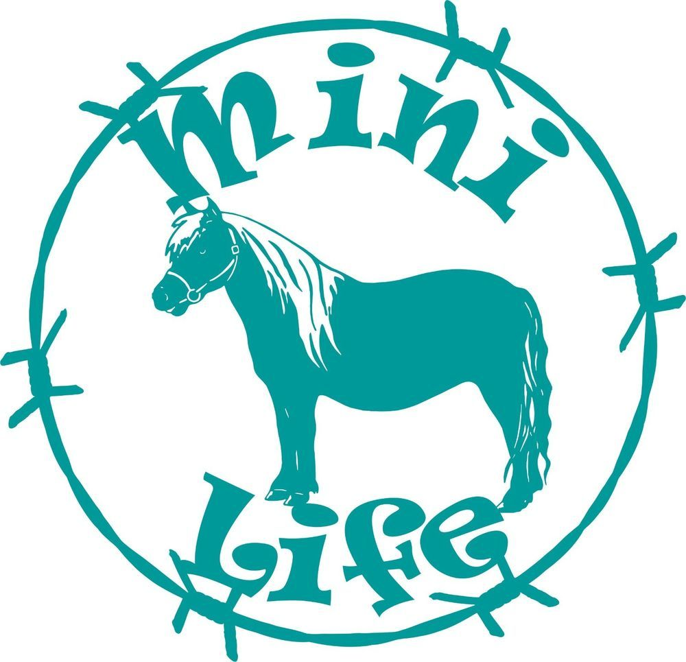 Mini Life Miniature Horse Barb Wire Car Truck Trailer Window Vinyl - Barb wire custom vinyl decals for trucks