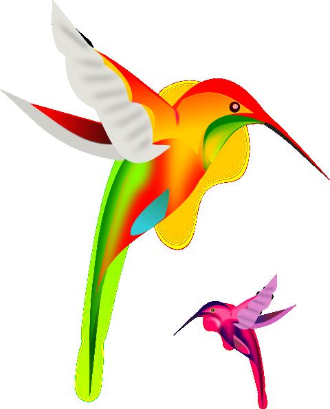 Colibries Animados Buscar Con Google Pintura De Colibri
