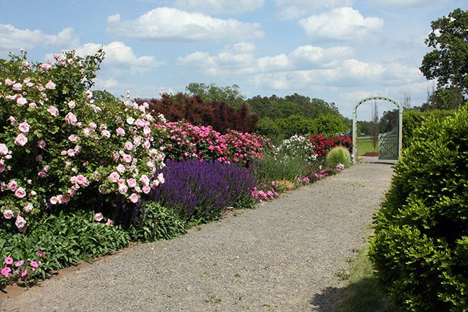Gardens At P Allen Smith S Moss Mountain Farm With Images