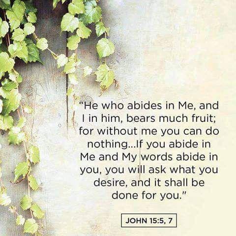 John 15 Biblical Quotes Inspirational Poems Healing Words