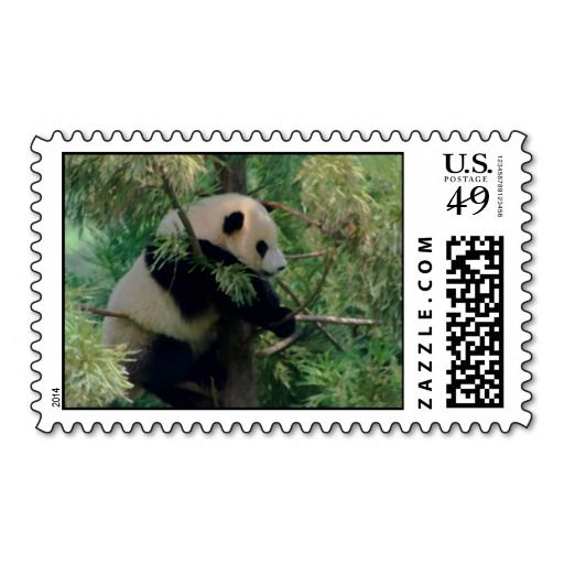 =>Sale on          	Panda Bear Hugs Stamps           	Panda Bear Hugs Stamps lowest price for you. In addition you can compare price with another store and read helpful reviews. BuyDeals          	Panda Bear Hugs Stamps today easy to Shops & Purchase Online - transferred directly secure and tr...Cleck Hot Deals >>> http://www.zazzle.com/panda_bear_hugs_stamps-172796534457159587?rf=238627982471231924&zbar=1&tc=terrest