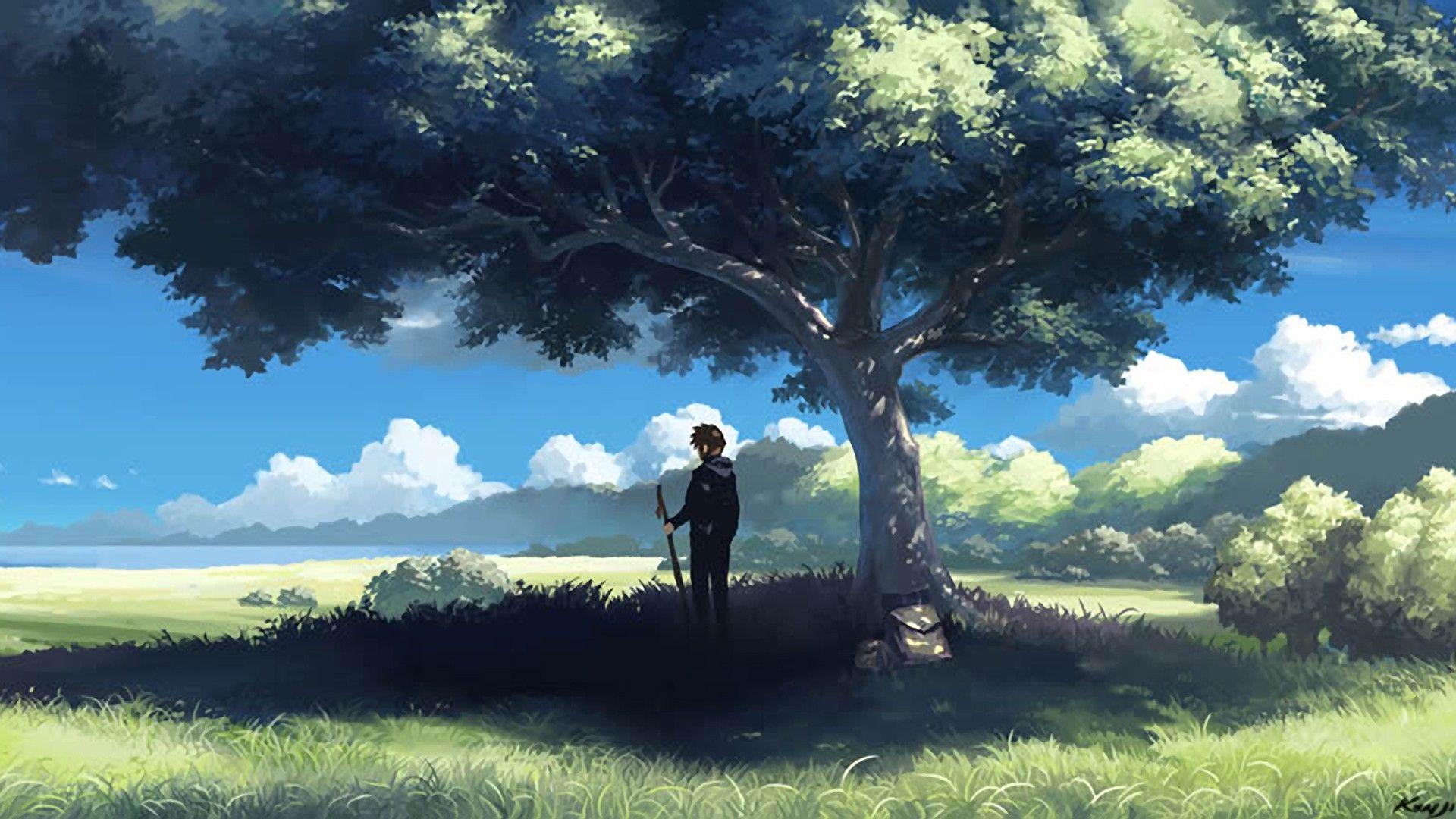 Desktop And Mobile Wallpaper Anime Scenery Anime Scenery Wallpaper Scenery Wallpaper