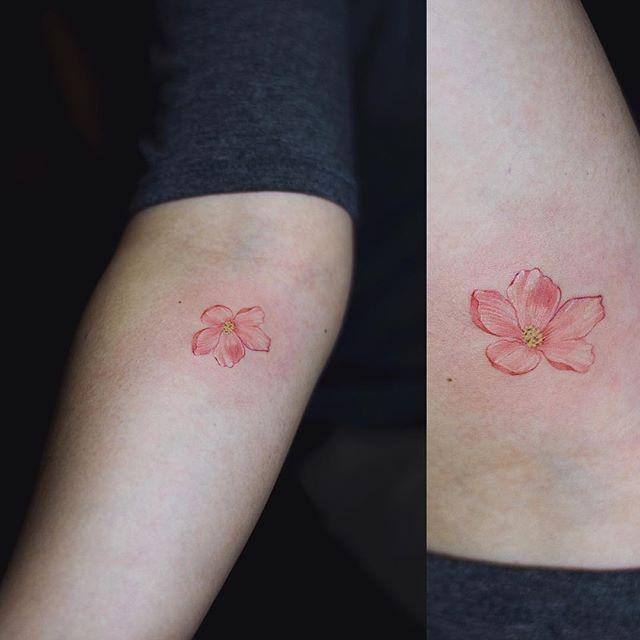 Instagram Photo By Sol Art Apr 28 2016 At 11 58am Utc Cherry Blossom Tattoo Blossom Tattoo Tattoos