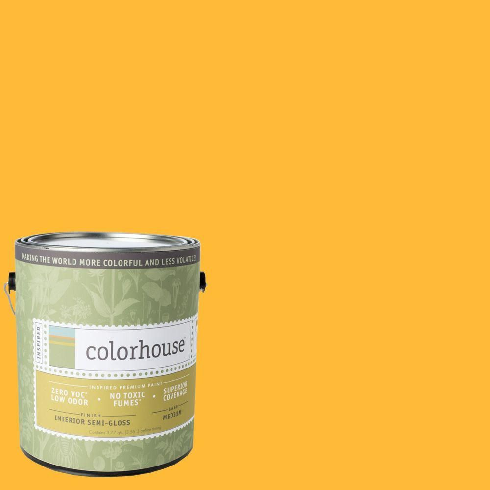 Colorhouse 1 gal. Aspire .06 Semi-Gloss Interior Paint   Products