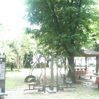 구반포 주공아파트 단지내 공원
