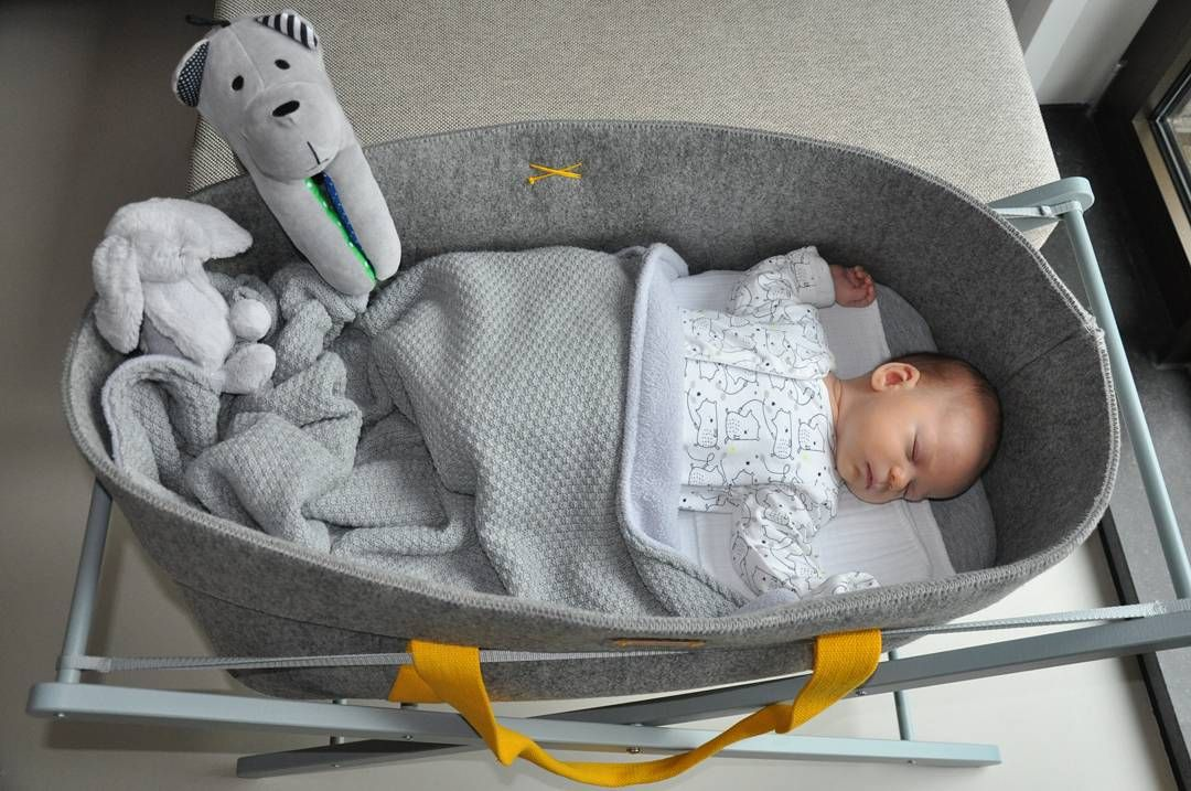 170cd618d Wool Nest by moKee, Moses Basket with Summer Dash handles and little feller  :)
