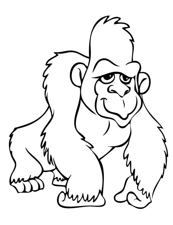 Gorilla Coloring Page Animal Coloring Pages Coloring Pages Art