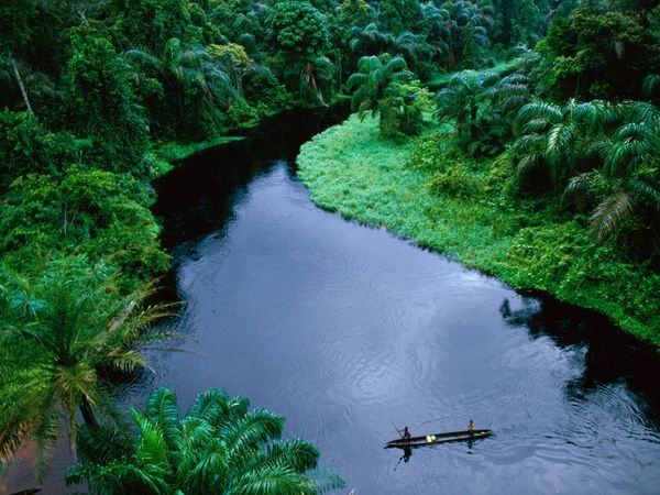 Banana Democratic Republic Of Congo Congo River Cool Places To
