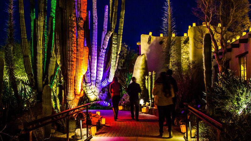 Lit & Sip Desert botanical garden, Arizona, Garden