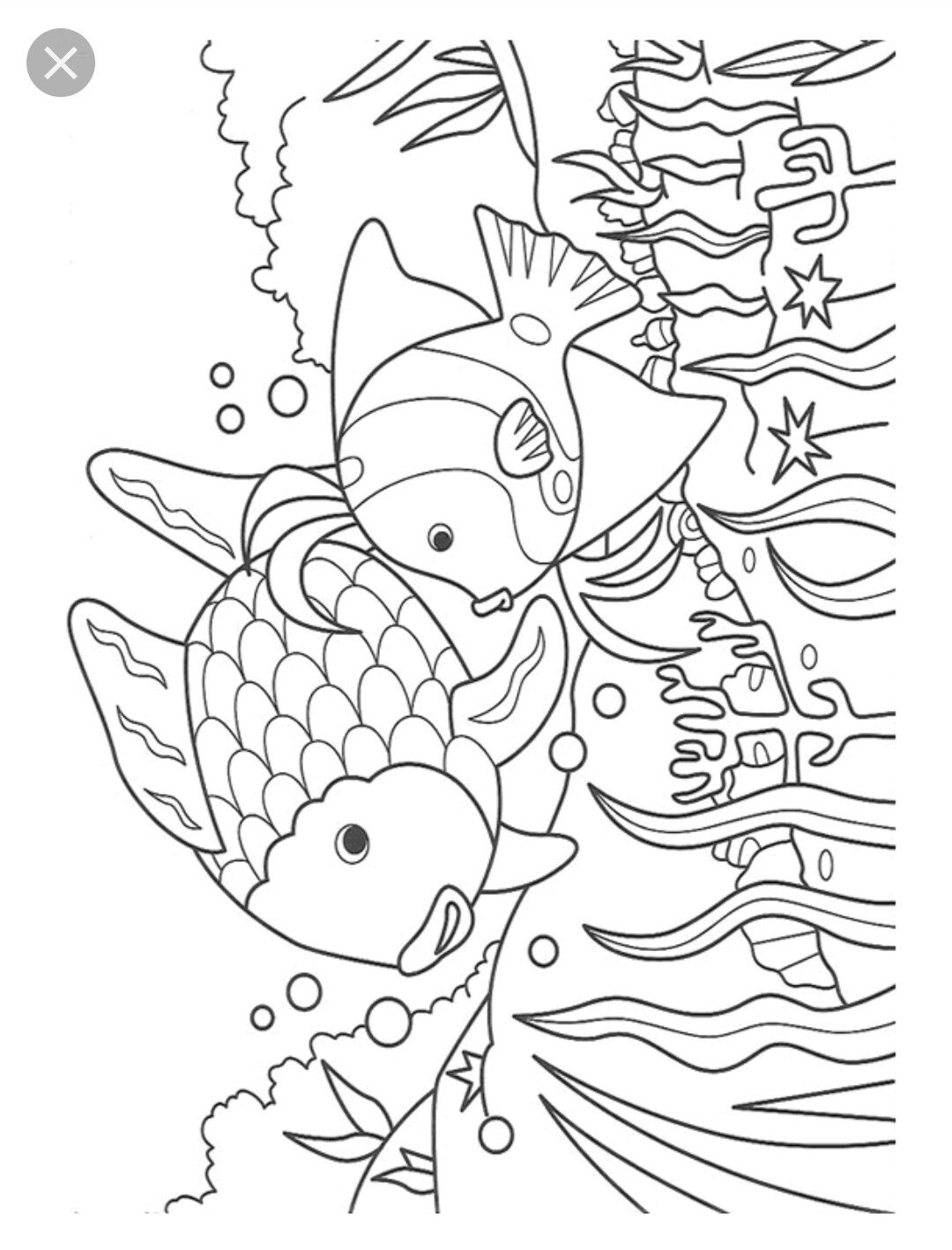44+ Print fish coloring pages info