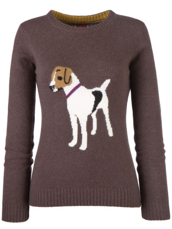 Jack Russell Sweater Okay Not Gorgeous But I Know Someone It Is