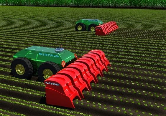 Down On The Farm Lettuce Bot Is Quietly Slaying Weeds With