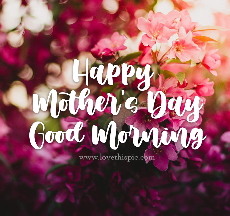 Good Morning Mom Meme - Good Morning Images, Quotes