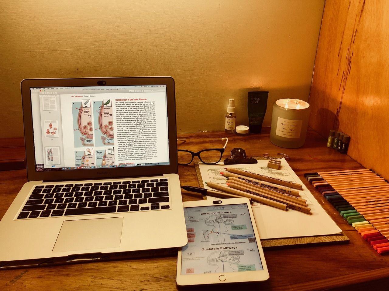 pinterest selinaa//☯☽ Dicas de estudo