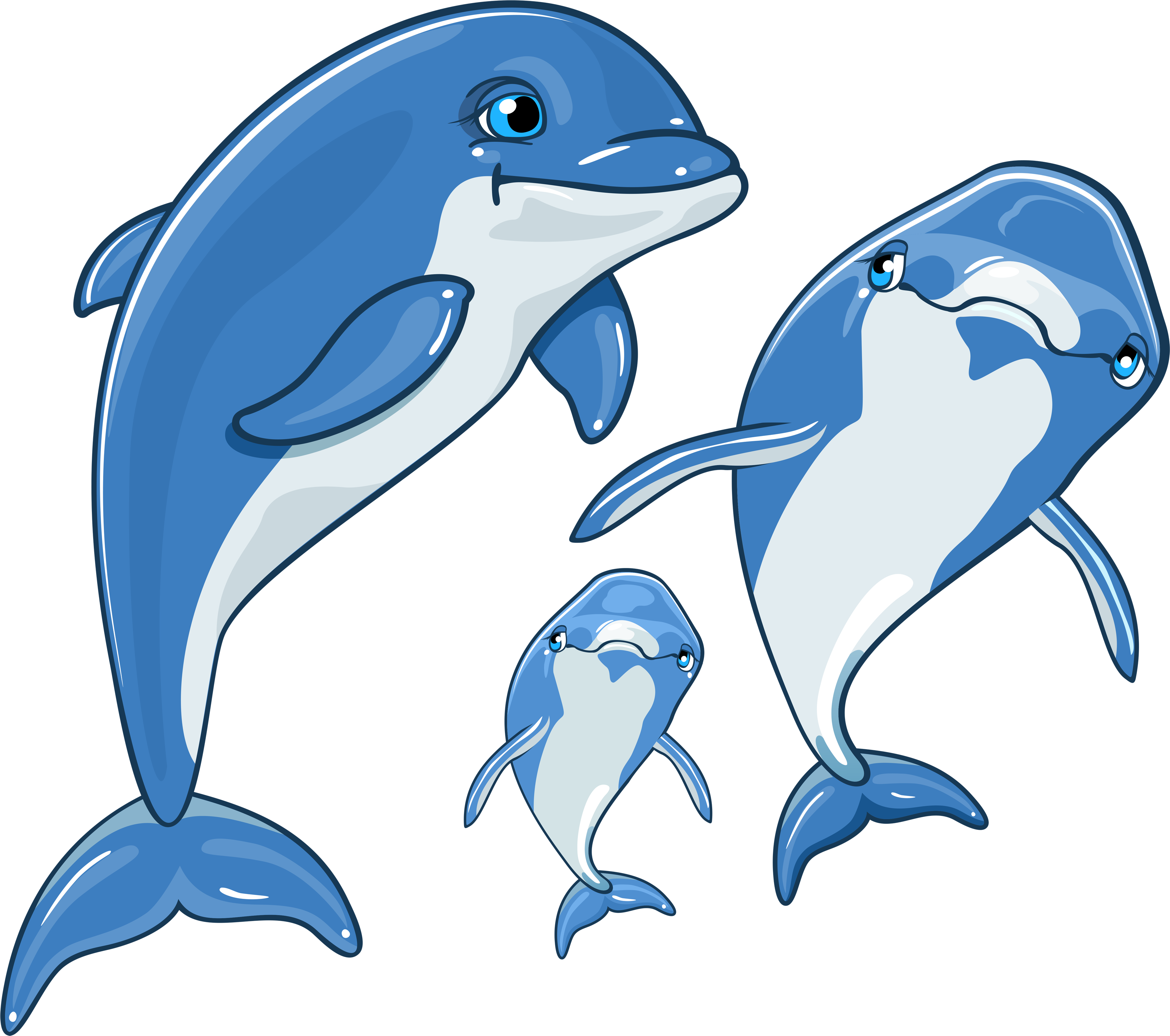Рыбки дельфинчики картинки