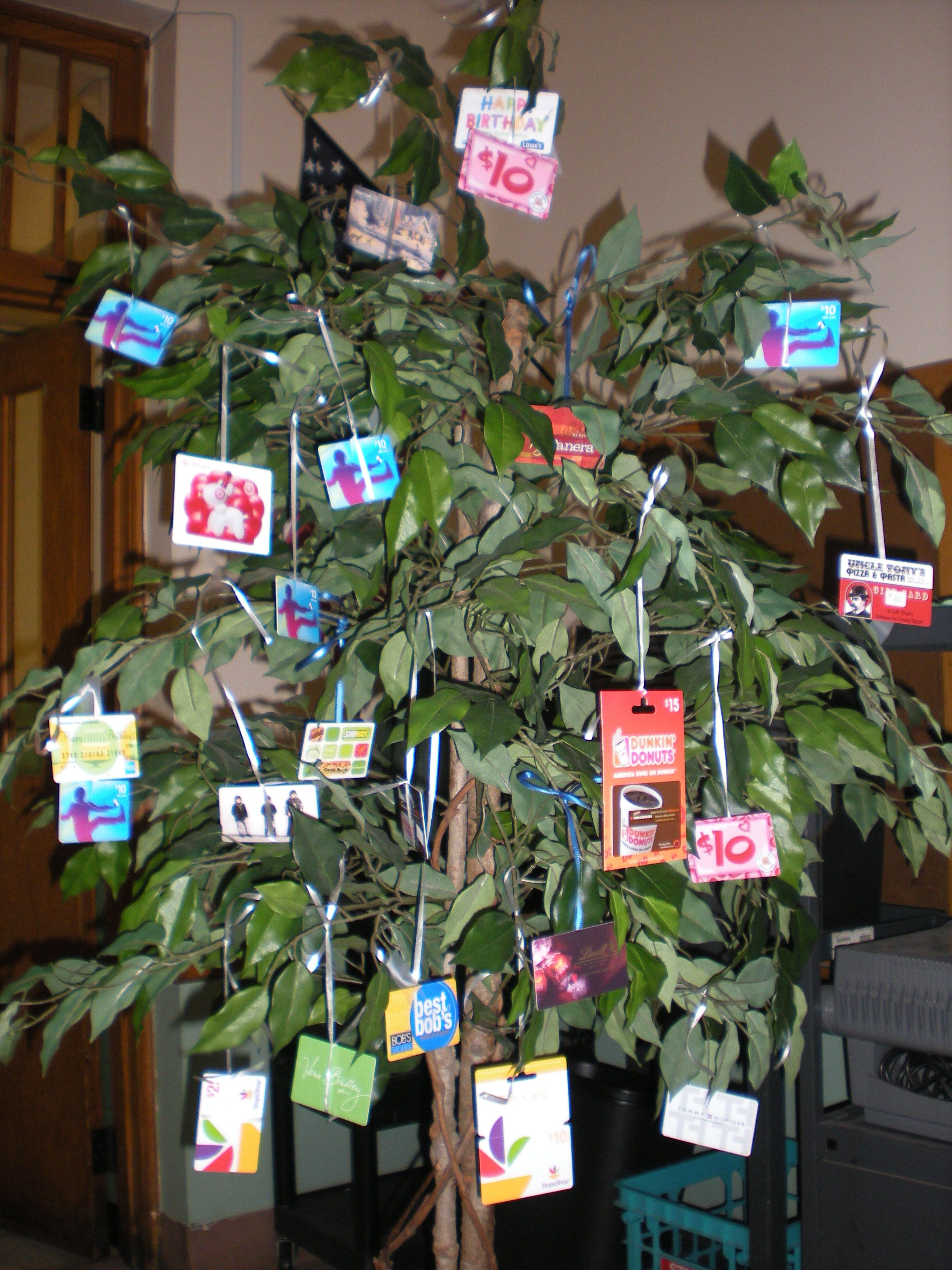 Live gift card tree use different kind of tree but i like the live gift card tree use different kind of tree but i like the idea negle Choice Image