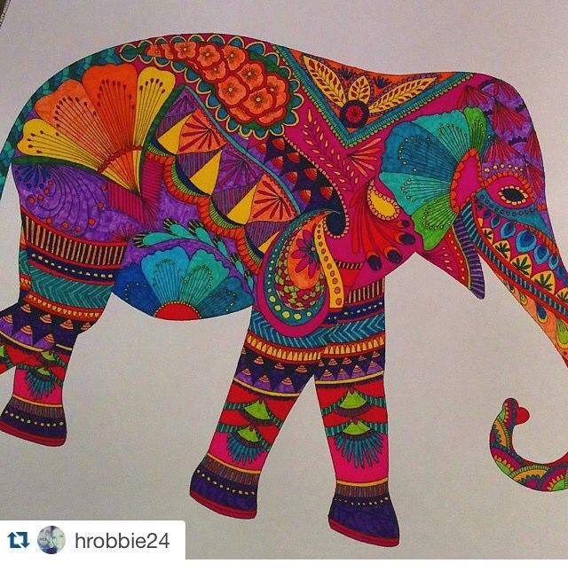 Image Result For Animal Kingdom Colouring Book Hippo