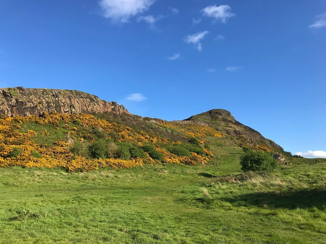 Often I add saturation to my pictures to make them look more like the way I see the colours.... the day I took this picture I didnt have to  no filter no adjusting colours. Edinburgh did it for me  finninscotland  visitscotland  afinninscotland  walk  nature  arthursseat  edinphoto  edinburghwalks  edinburgh  visitedinburgh  dailyphotos  photography  blueskiesahead  adventureawaits