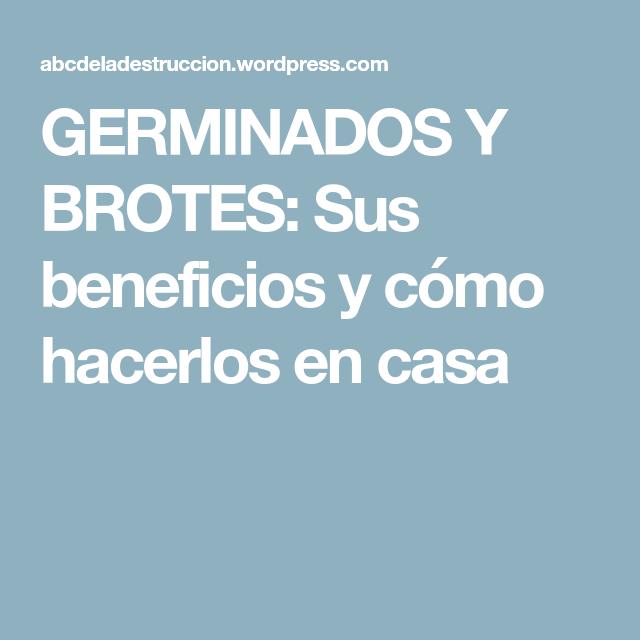GERMINADOS Y BROTES: Sus beneficios y cómo hacerlos en casa