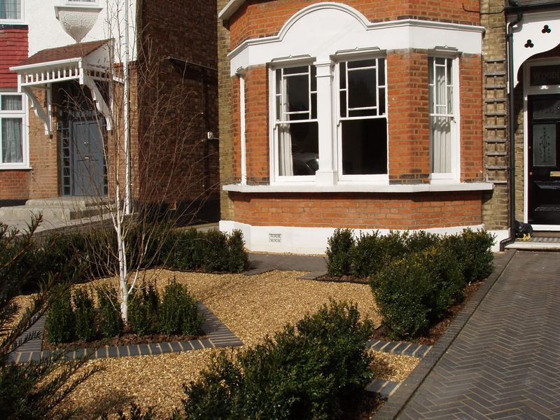 Formal front garden - low maintenance - focal tree | Front ...